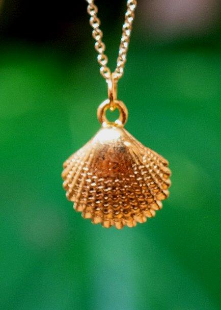 Gouden ketting met schelpje hanger-goud-op-zilver