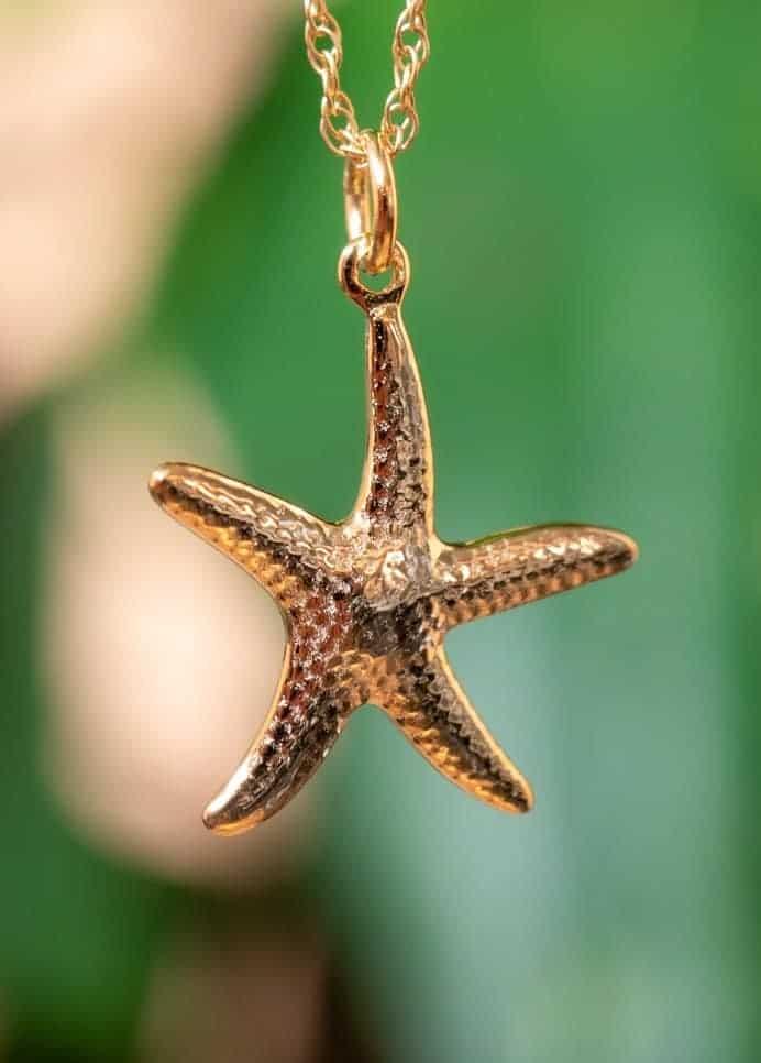 Gouden ketting met zeester hanger-goud-op-zilver