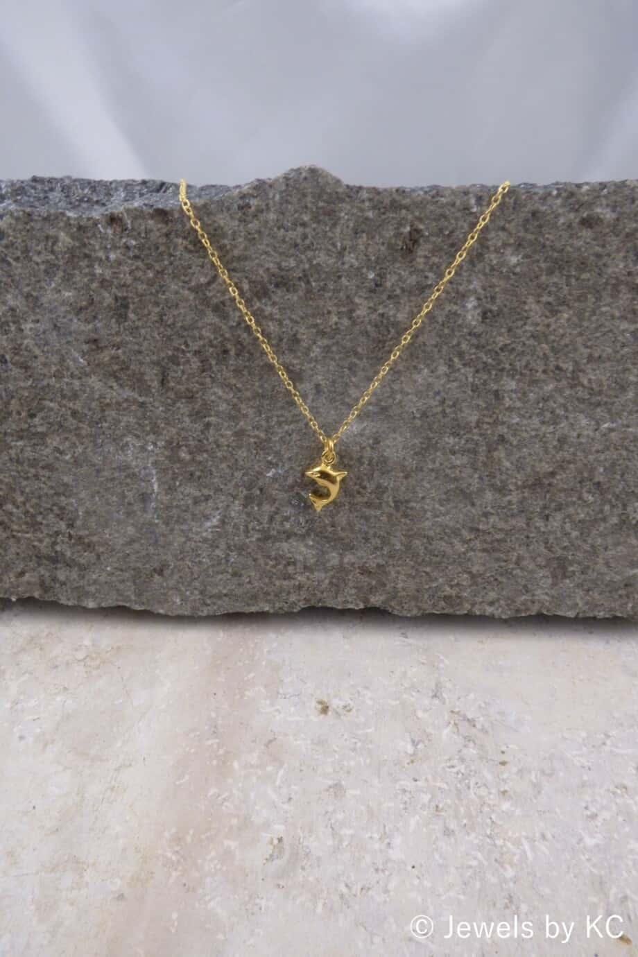 Gouden ketting met 'Dolfijn' hanger van Goud op Zilver